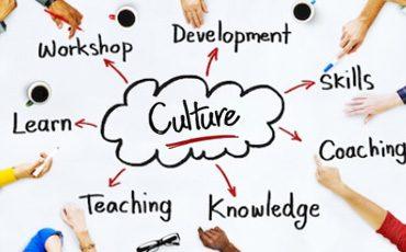 Culture Awareness Training